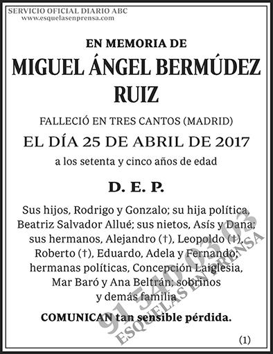 Miguel Ángel Bermúdez Ruiz